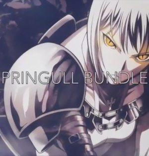 Pringull Bundle by Jedrick Prudente