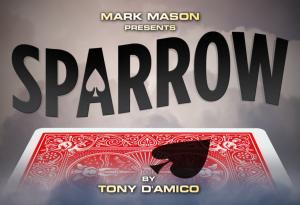 Tony D'Amico – Sparrow