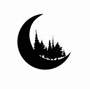 Forest Moon – The Bandalorian