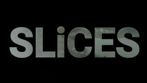 Ragil Septia & Risky Albert – SLiCES
