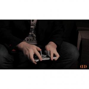 Michael Feldman – Riffle Shuffle Action Palm